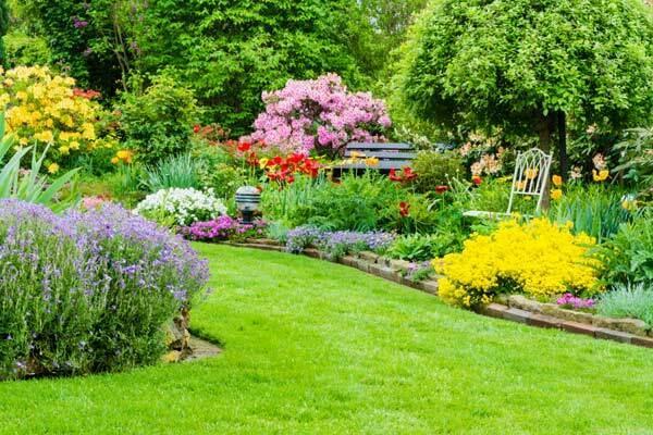 Un jardín con flores silvestres no es difícil. Y es urgente.